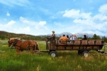 Wagon Ride (phot credit Matt Bass)
